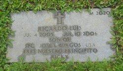 Ricardo Luis Burgos