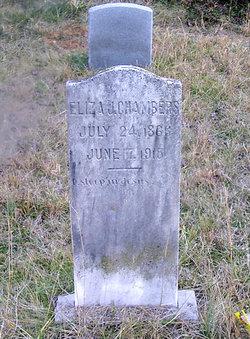Eliza Jane <i>Richards</i> Chambers