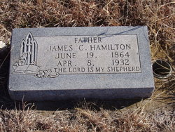 James C Hamilton