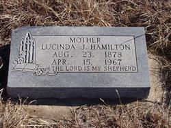 Lucinda J Hamilton