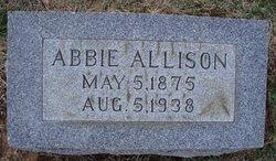 Abbie Grace <i>Allison</i> Conkey