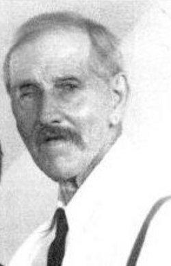 David Gray Adams