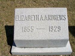 Elizabeth A Andrews
