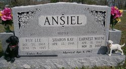 Roy Lee Ansiel