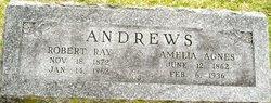 Robert Ray Andrews