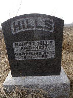 Sarah <i>Allinson</i> Hills