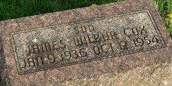 James Wilber Cox