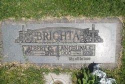 Albert C Brichta