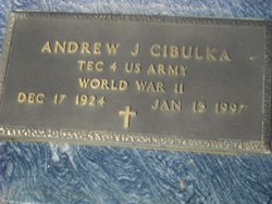 Andrew J. Cibulka