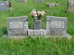 Elijah Abney, Jr