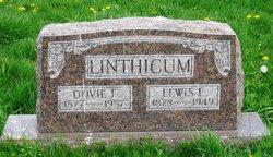 Lewis E Linthicum