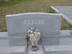 Elton Lehman Akins