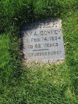 Mary A Dohney