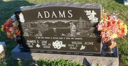 James E. Jim Adams