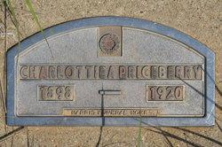 Charlottie A. <i>Price</i> Berry