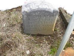 Bertha Aerni