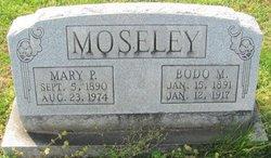 Bodo M. Moseley