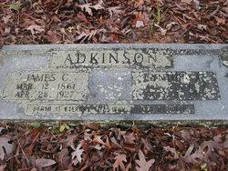 Cynthia Ann <i>Freeman</i> Adkinson