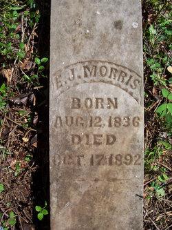 Edmund J E.J. Morris