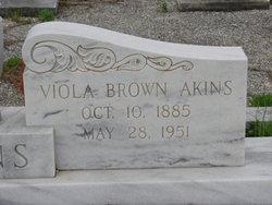 Viola <i>Brown</i> Akins