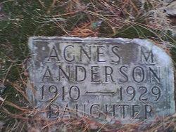 Agnes M Anderson