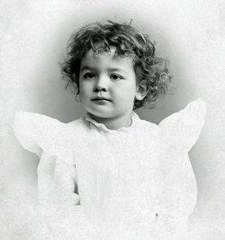 Albert Shaw Fisher