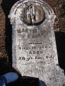 Martin S. Hawkins