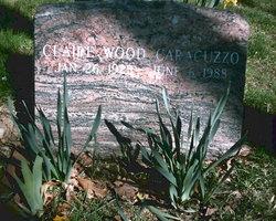 Claire <i>Wood</i> Caracuzzo