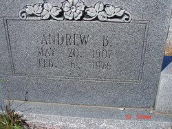Andrew B Adams
