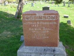 Arthur S Robinson