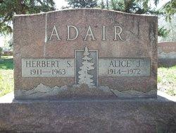 Alice J Adair