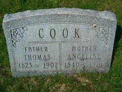 Angeline <i>Hoyt</i> Cook