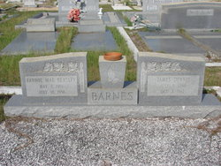 Fannie Mae <i>Beasley</i> Barnes