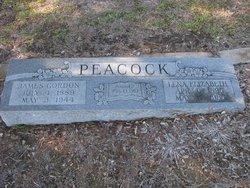 Lena Elizabeth Peacock