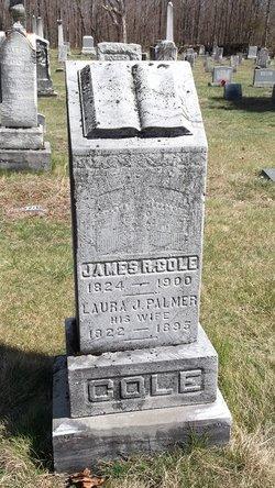Laura J. <i>Palmer</i> Cole