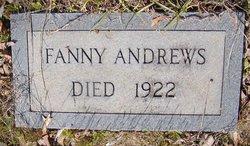 Mary Frances Fanny <i>Edwards</i> Andrews