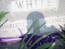 Estella Bernice <i>DeGloyer</i> White