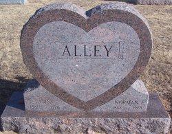 Norman E Alley