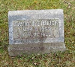 David J Gimlich