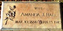 Amanda Jane <i>Lowrie</i> Hall