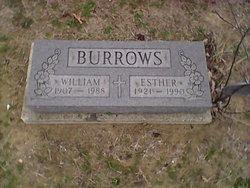 William Burrows