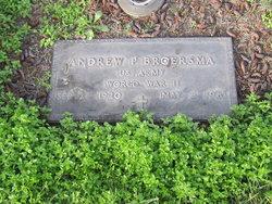 Andrew P Broersma