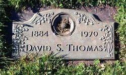 David S Thomas