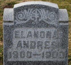 Elanora Andres