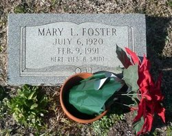 Mary L Foster