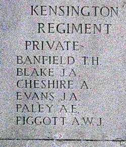 Private Albert Edward Paley