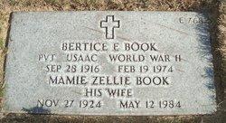 Bertice E Book
