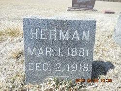 Herman E Bohlen