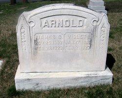 Violet I. Arnold