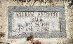 Andrew Anthony Baca